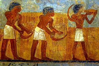 egyptian-farmers