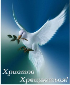 epiphany-dove