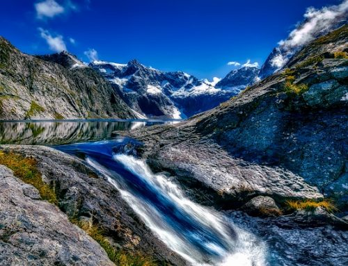 Some Interesting Facts About New Zealand