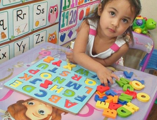 Year 1:  Learn the Letters, Sounds, Words