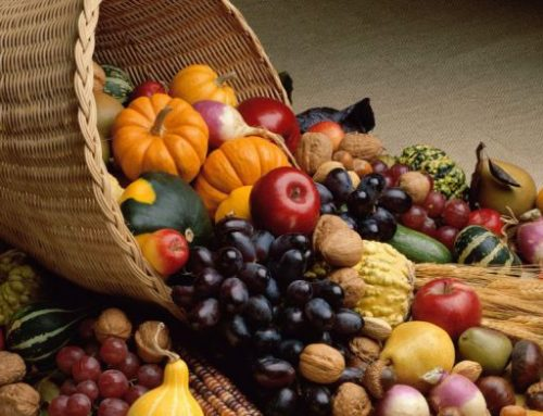 Harvest Festivals and Thanksgiving Celebrations