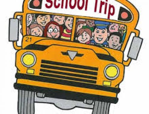 Our School Trip