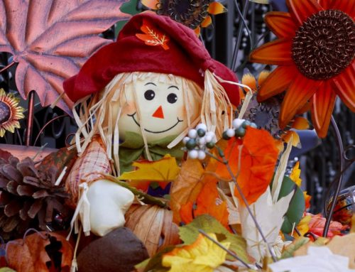 Thanksgiving Day in the USA: History and Traditions