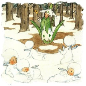 snowdrop-tale