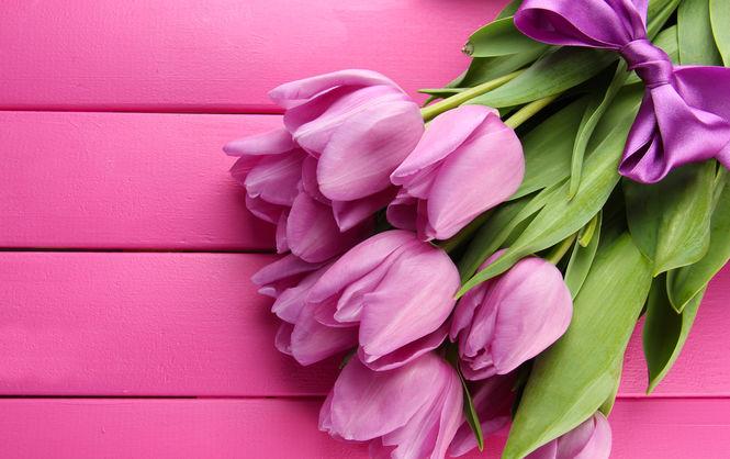 violet-tulips2