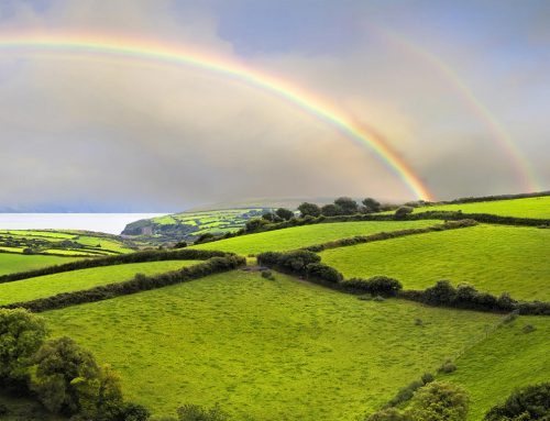 Ireland Interesting Facts