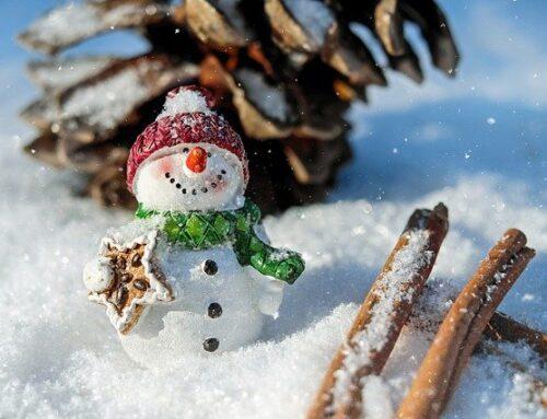 My Winter Holidays